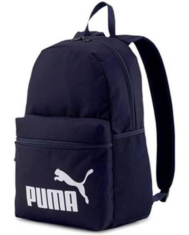 Batohy Puma
